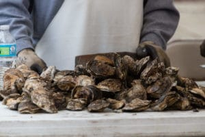 Rock Hall Oysters