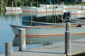 Docked crabbing boats