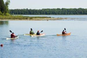 People kayaking in the lake