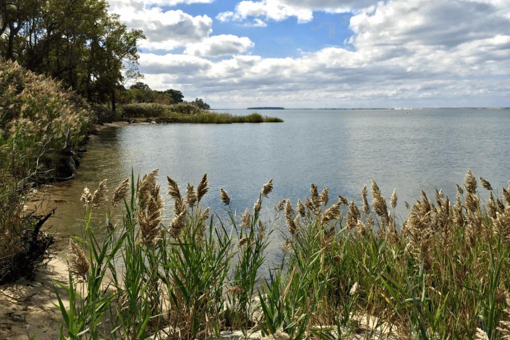 chesapeake bay scenery